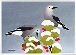Click here for more information about Clark's Nutcracker holiday cards