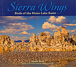 Click here for more information about Sierra Wings