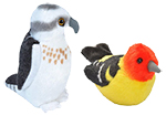 Click here for more information about Audubon plush birds