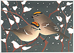 Click here for more information about Golden-crowned Kinglets holiday card set